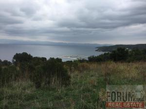 CODE 10894 - Farm parcel for sale Paliouri (Pallini)
